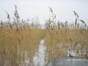 Azov-off-road-23-fevralya-2012.49